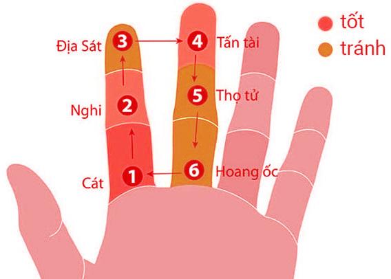 Tính tuổi hoang ốc dựa trên đầu ngón tay
